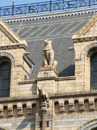A gargoyle on the Victoria and Albert Museum, London, England