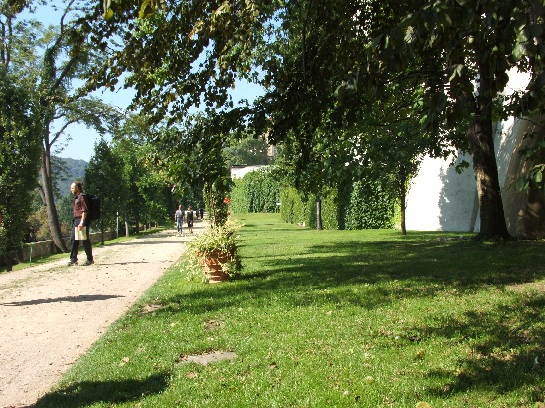 View of gardens around Prague Castle, Prague, Czech Republic