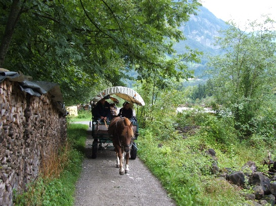 Horse drawn carriage ride through the Swiss countryside, Switzerland