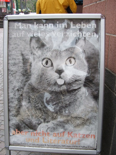 Poster of a cute German Cat Frankfurt, Germany